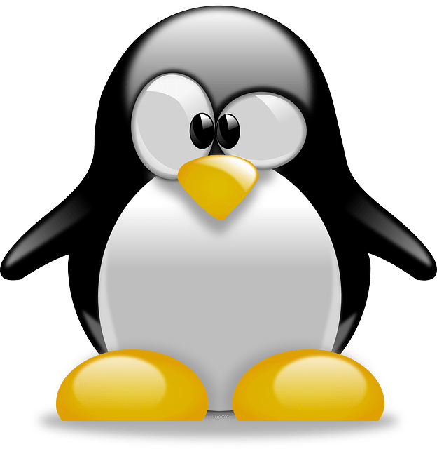 linux server τεχνική υποστήριξη